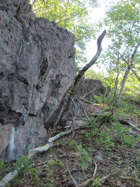 Sara L.: Royal Gorge 7/4/14 &emdash;