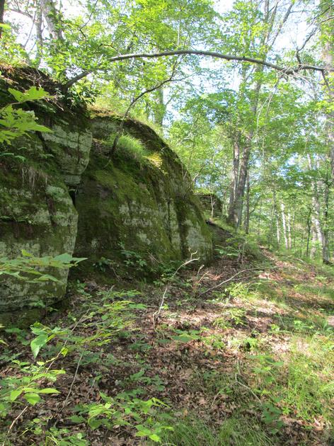 Sara L.: Graham Cave State park 6-28-14 &emdash;